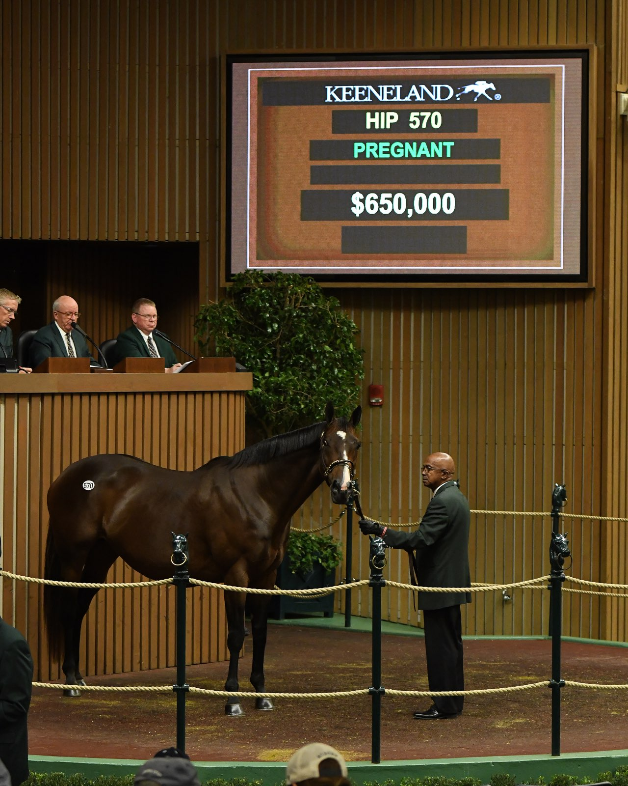 Dynamic Market, Sale of Conquest Eclipse for $650,000 Highlight ...